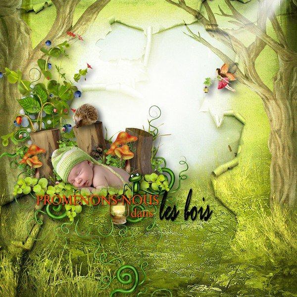 MEL CREA : paradisiac forest