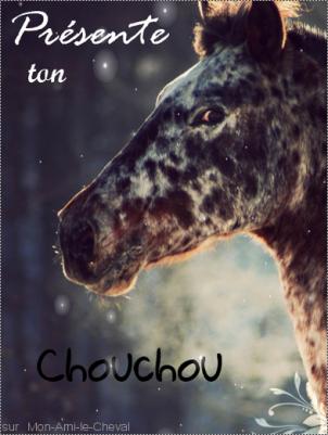 Présente ton Chouchou