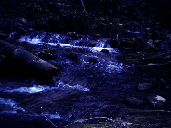 Si ton coeur était un petit ruisseau, je sauterais dedans.