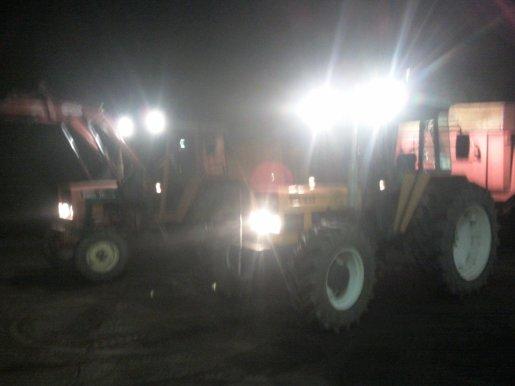 Transport fumier de champignon 2010 .