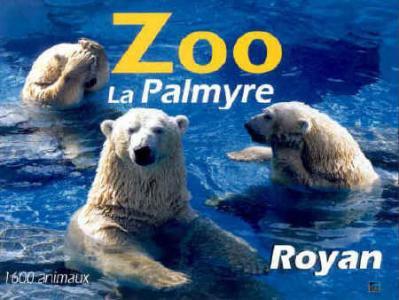 Pour quel zoo as tu eu un coup de coeur ?