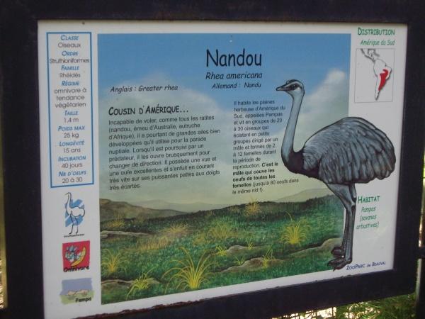 NANDOU