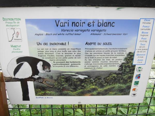 VARI NOIR & BLANC