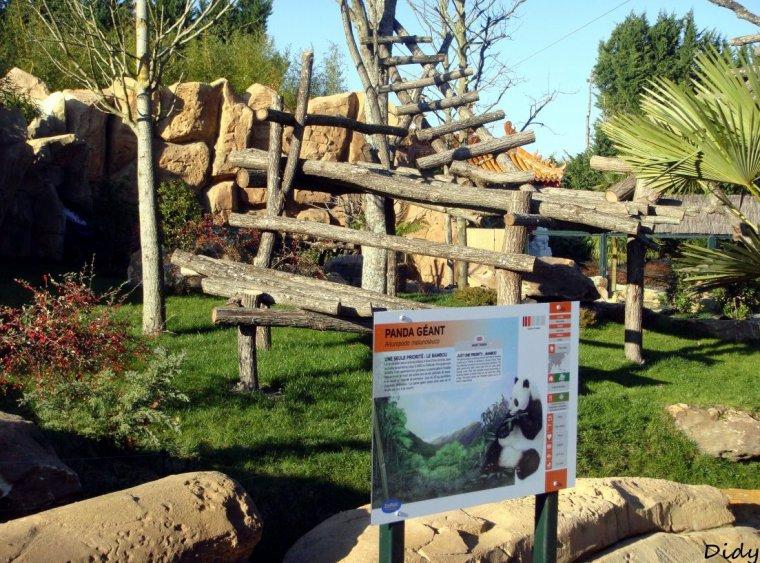 Des pandas geants au zooparc de beauval huan huan yuan for Zoo exterieur