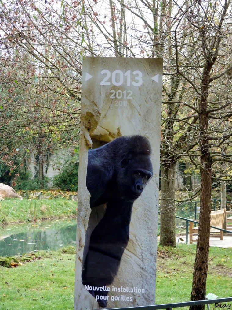 nouveaux panneaux dans les allées de beauval et statues (suite 3)