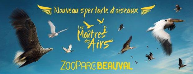 """nouveau spectacle d'oiseaux 2014 """"les maîtres des airs"""", 1ère représentation le 12 avril 2014"""