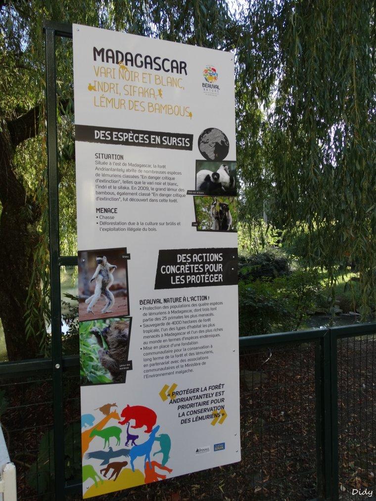nouveaux panneaux dans les allées de beauval et statues (suite 4)
