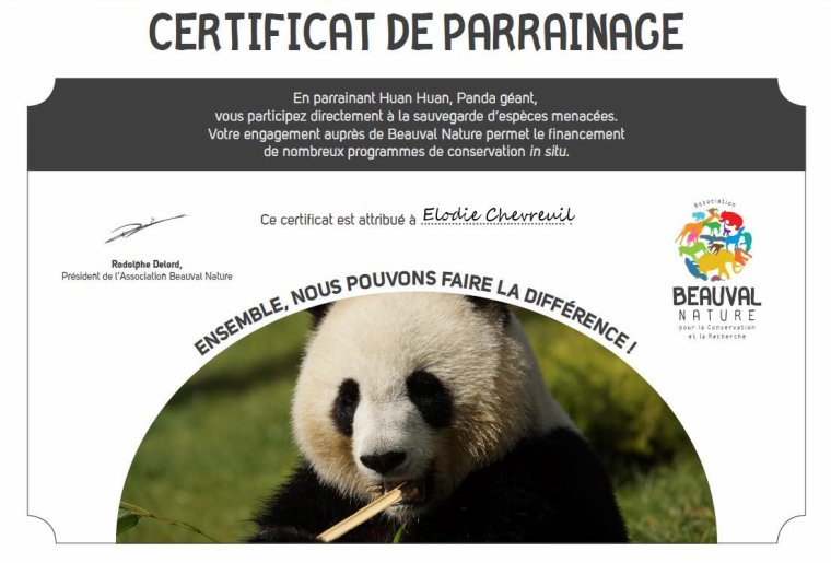 PARRAINAGE DE HUAN HUAN femelle PANDA GEANT