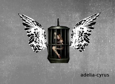 pour adelia-cyrus