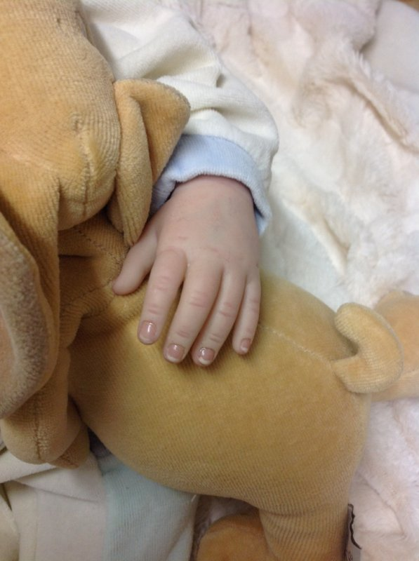 Très beau bébé Émilie , née le 06/11/2013 pèse 2,100 kg .A été adoptée