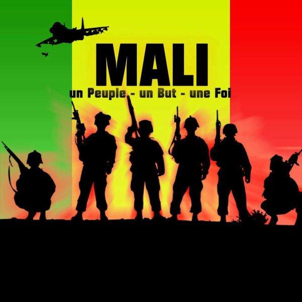 un maliba à la comquet d son territoir / One Mali  (2013)