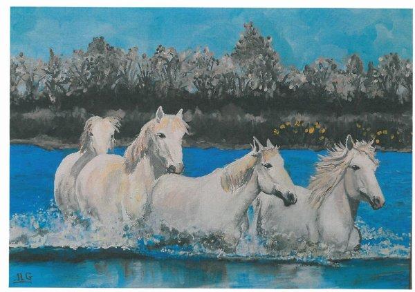 chevaux de Camargue 2