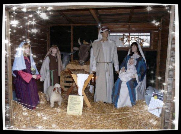576 - Joyeuses Fêtes de Noël à toutes et à tous -
