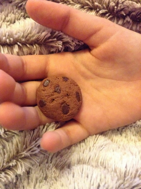 Cookies chocolat et nature