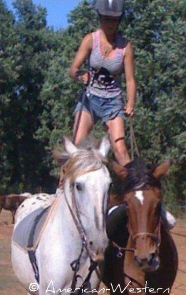 Chili, un ange tombé du ciel ♥ Apache, un cheval formidable, dans un monde fort minable ♥