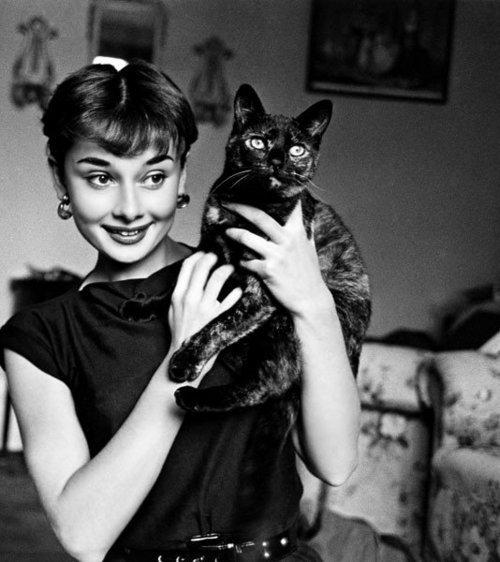 Clin d'oeil d'Audrey Hepburn