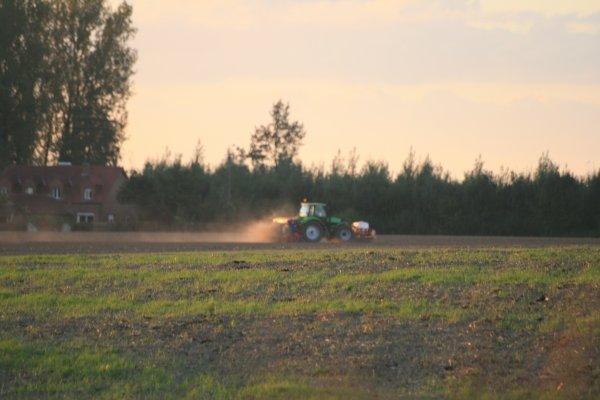 Semis d'automne 2012