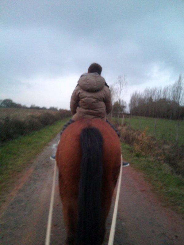 Bin y caiiiiiiiiille !! :)