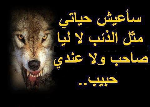 je  chui  comme  le  loup   ^_^ ==>  réste  toujour  comme  ça