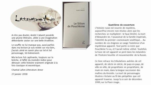 Le sillon de Pouchkine de André Cabaret aux éditions Vibration