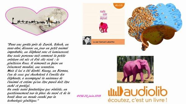 Eléphant de Martin Suter Lu par Samuel Labarthe pour Audiolib