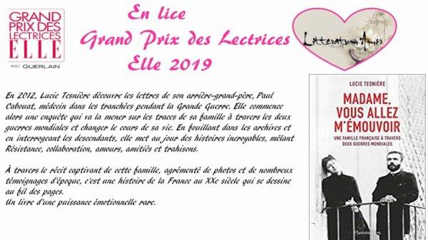 Madame, vous allez m'émouvoir de Lucie Tesnière éditions Flammarion