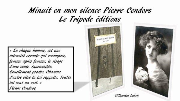Minuit en mon silence de Pierre Cendors aux éditions Le Tripode