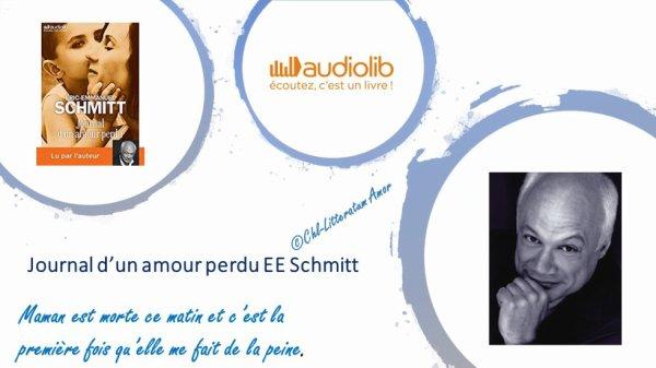 Journal d'un amour perdu Eric-Emmanuel Schmitt Audiolib