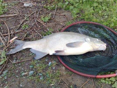 Pêche le lundi 13 avril 2009