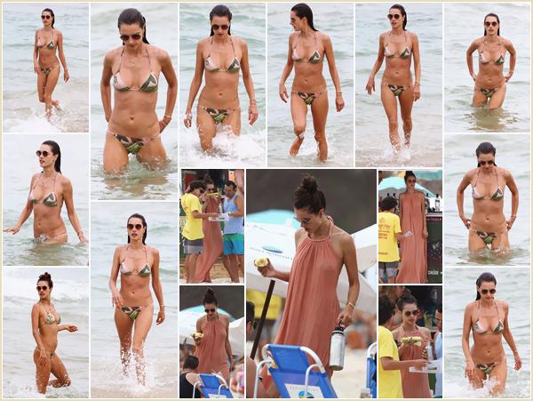 -─ 28/12/17-' : Alessandra Ambrosio à été aperçue profitant avec des amis de la plage de ▬ « Florianópolis » au Brésil  !  Alessandra ressort pour notre plus grand plaisir pour profiter de la plage après les fêtes de noël. Gros coup de coeur pour son maillot de bain un - TOP.