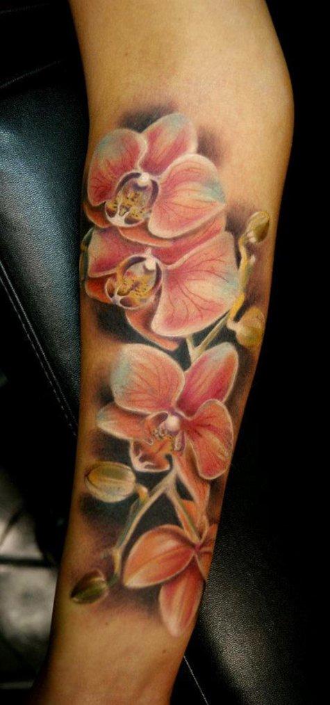 Série Orchidées