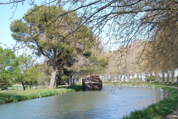 Canal du Midi (6)
