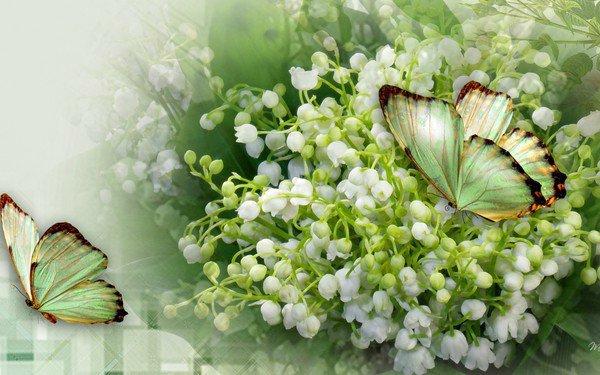 au revoir avril bonjour mai