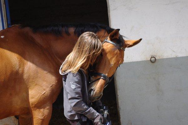 mon premier cheval <3