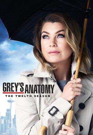 grey's anatomy saison12
