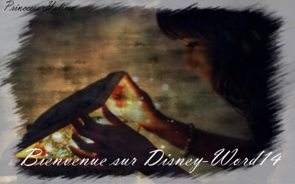 Welcome Disney-word14 ( Montage : Disney-word14 ( moi )