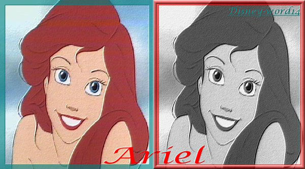 Ariel : Montage : HALIMA