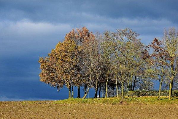Vos prévisions météo de ce samedi 9 novembre