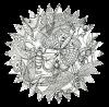 cloportedefeu-DS