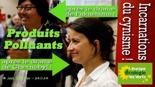 A quoi servent les Verts ? A part mettre le bazar en France, à rien. Montage Jack Chevalier. A Partager