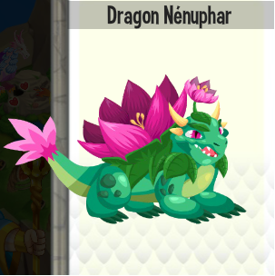 Dragon nénuphar