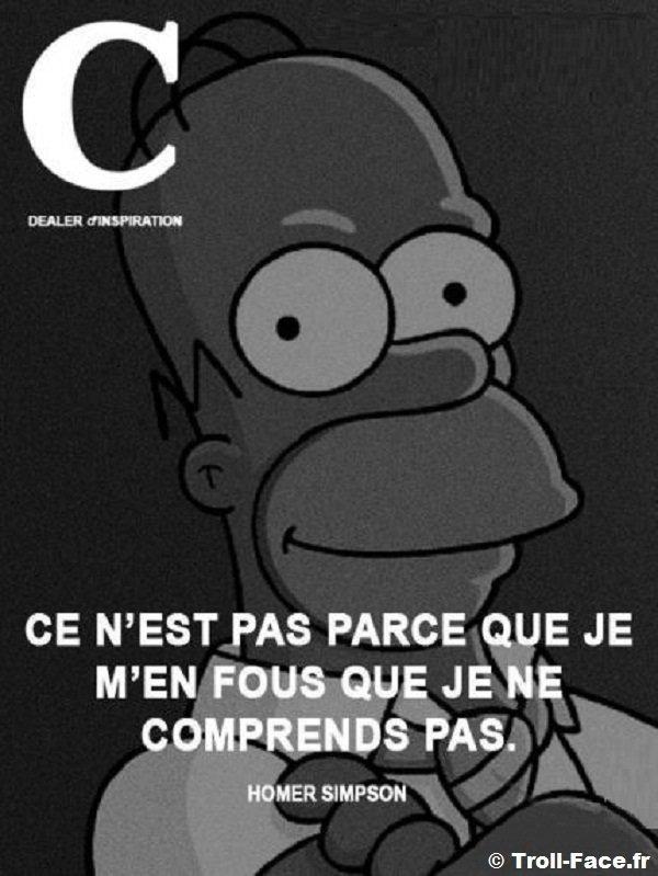 Proverbe de Homer Simpson
