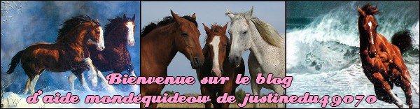 /!\ Bonjour /!\ Présentation/Sommaire