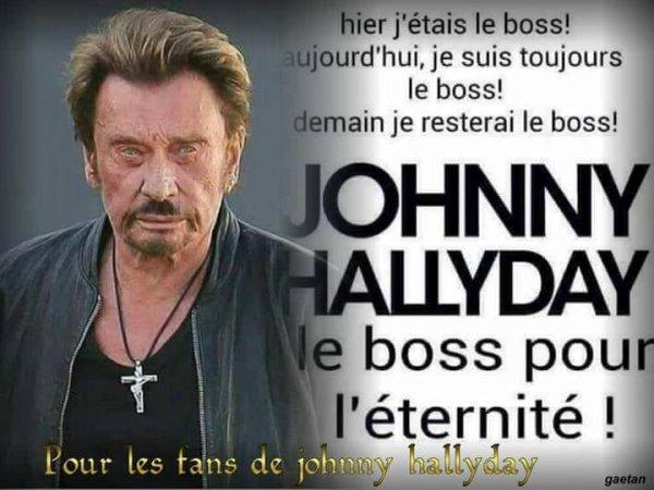 monsieur hallyday