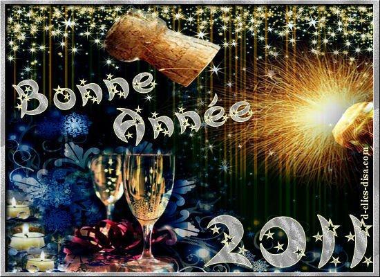 bonne annee 2011 a tous !!!!!