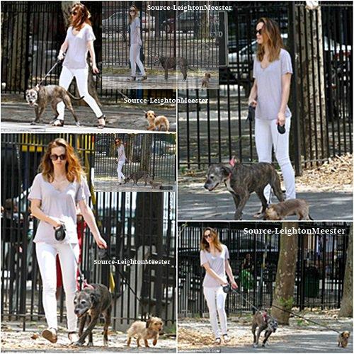 9juillet, Leighton a été vu promenant ces chiens à New-York