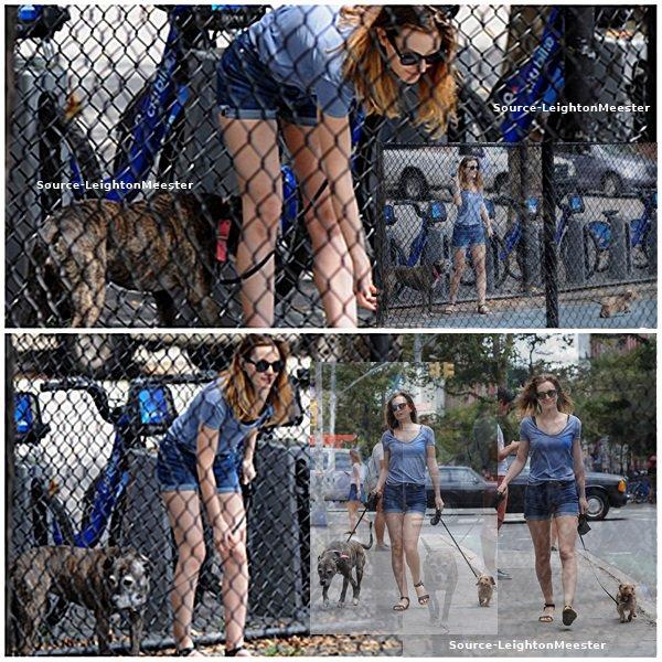 28juillet, Leighton & Adam, promenent leurs chiens