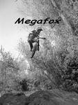 Photo de Megafox