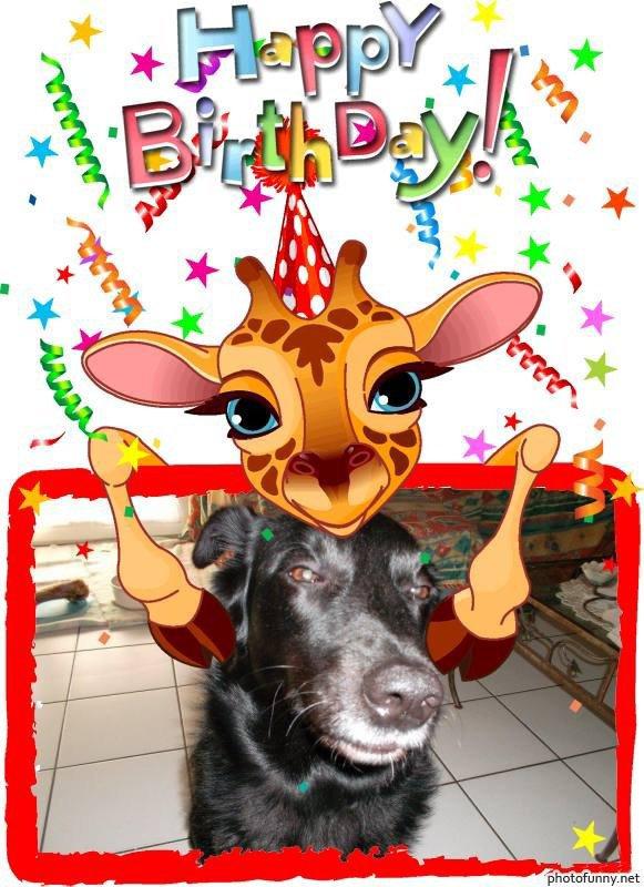 ****merci  mon amie pour ton beau cadeaux pour dayko kisssssss**************
