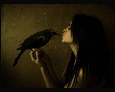 La neige et Les corbeaux..♥